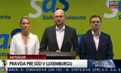 Radoslav Procházka na post sudcu - Richard Sulík